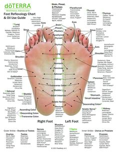 Hand & Foot reflexology chart indicating possible essential oil uses for the var. - Hand & Foot reflexology chart indicating possible essential oil uses for the various hand and feet r - Essential Oil Uses, Doterra Essential Oils, Essential Oil Chart, Essential Oil Supplies, Essential Oils For Pain, Health Benefits, Health Tips, Health Facts, Health Quotes
