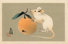 Vintage Japanese, Japanese Art, Red Packet, Japan Illustration, Maori Designs, Year Of The Rat, Irezumi, Illustrations, Chinese Painting