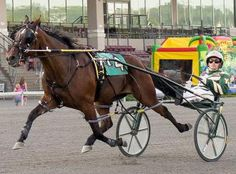 Meadowlands Andy Miller Guides Pair Of Unbeatens On Saturday