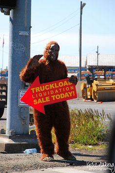 Bigfoot sighting!!!