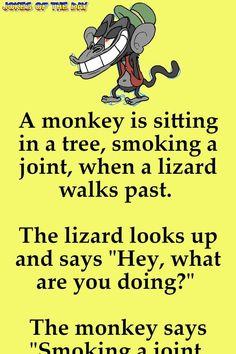Funny Joke: A monkey is sitting in a tree, smoking a joint, when a lizard walks past. #FunnyQuotesAboutLife #FunnyQuotesAboutLifeHumor #FunnyQuotesForWomen #FunnyQuotesForFriends Funny Long Jokes, Clean Funny Jokes, Funny Jokes For Adults, Funny Texts, Funny Quotes, Funny Work Humor, Funny Grandma Quotes, Funny Bedtime Quotes, Work Funnies