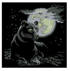Zwarte panter (ZP)