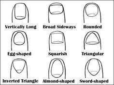 Look Down At Your Nails. The Way They Are Shaped May Indicate Something About Your Personality. Find out what your nail shape says about your personality! Long Nail Beds, Japanese Trends, Nail Quotes, Something About You, Shape Of You, Egg Shape, Types Of Nails, Jamberry Nails, Toe Nails