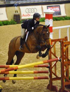 Equestrian - Art Of Equitation Horse Girl, Horse Love, Pretty Horses, Beautiful Horses, Equestrian Outfits, Equestrian Fashion, Equestrian Style, English Riding, Horse Quotes