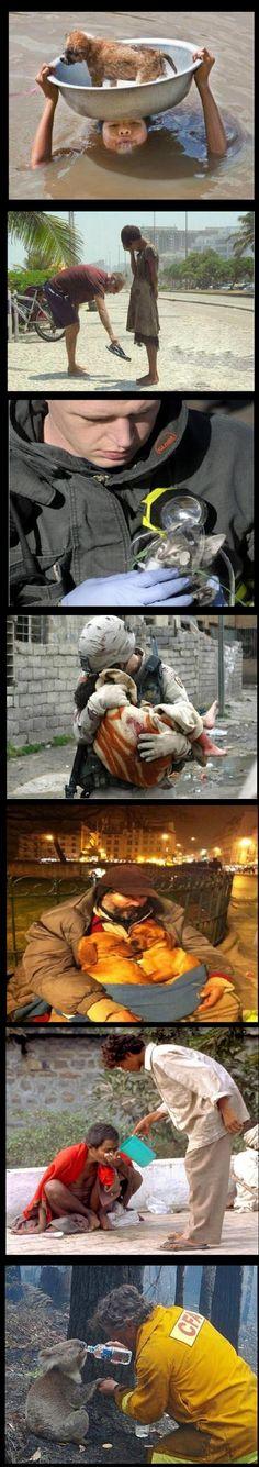 Faith in humanity : RESTORED! - Win Bild