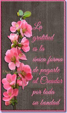 Gratitud Good Morning Messages, Good Morning Good Night, Good Morning Wishes, Morning Quotes, Biblical Quotes, Spiritual Quotes, Quotes En Espanol, Happy Birthday Messages, Spiritus