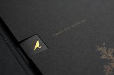 Agatha O | Black & Gold - Lisa Tse Brochure Design