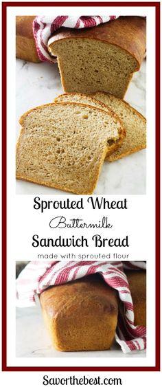 Sprouted wheat buttermilk sandwich bread: Soft and tender sandwich bread made with sprouted whole wheat flour