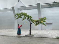 Korea, Ikebana. (Courtesy of Julia Fullerton-Batten) http://www.visiontimes.com/2016/01/13/tradition-meets-modernity-in-korea-fine-art-photography.html