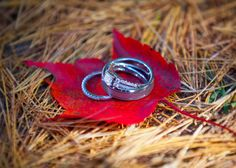 Rings in Autumn