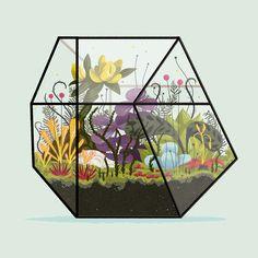 Andrew Kolb - Terrarium 3 Metroid