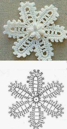 Flowers schemes. Motifs for Irish lace