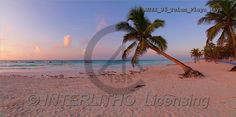 Dr. Xiong, LANDSCAPES, photos(AUJX96-TULUM/PLAYA,#L#)