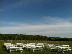 Vineyard 48 Winery on the North Fork of Long Island