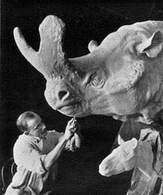 """""""MIGHTY BEAST"""": Fossil finds, science and art of a century ago yield the likeness of a rhinoceros-like titanothere (also called brontothere) at the American Museum of Natural History, New York. The colorful description: """"these mighty beasts roamed the ancient flooded plains of Western America"""" about two million years ago. [Scientific American, April 6, 1912]"""