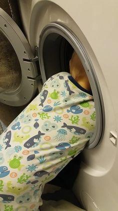 Washing Machine, Home Appliances, House Appliances, Kitchen Appliances, Washers, Appliances
