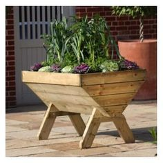 I am so pleased with the height and ease of use of my trough garden planter that I will probably order another: http://www.harrodhorticultural.com/maxi-manger-trough-planter-pid8092.html Wooden Plant Trough - Raised Planters at Harrod Horticultural
