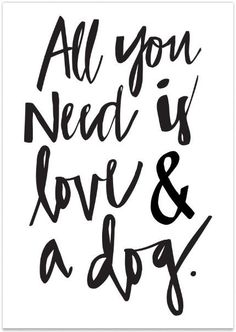 All You Need is Love and this Dog Print!