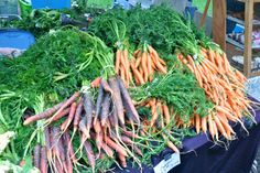 Farm fresh carrots. Carrots promote good eye sight. Ever noticed how a sliced piece of carrot looks like an eye? No coincidence!