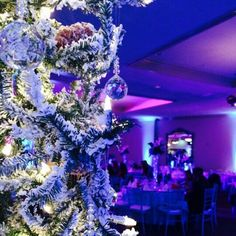 """Quince"""" Frozen decoracion"""