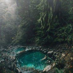 Beautiful Terwilliger hot springs in the Willamette National Forest, Oregon U.S.