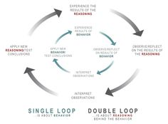 Single and double loop learning