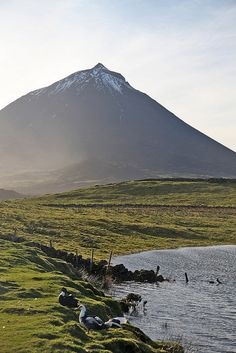Pico - Azores, Portugal by Gabriel Soeiro Mendes, via Flickr