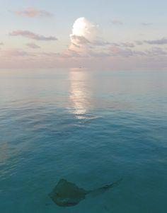 Euriental | fashion & luxury travel | overwater villa at #Conrad #Maldives Rangali Island