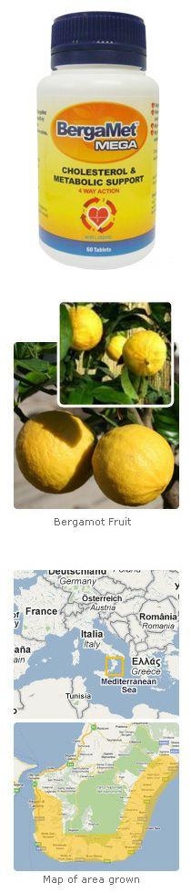 Bergamot BergaMet MEGA Overview