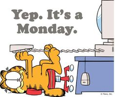 Yep, it's Monday!