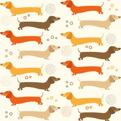 Discover thousands of Premium vectors available in AI and EPS formats Arte Dachshund, Dachshund Love, Dog Wallpaper, Pattern Wallpaper, Dog Vector, Background Patterns, Vector Background, Cute Doodles, Weenie Dogs