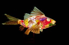 REW_8696 Paper Fish Lamp by bwehr6, via Flickr