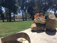 The Eternal Flame at UCSB