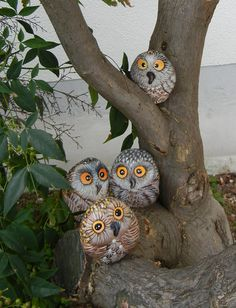 tree with painted rock owls
