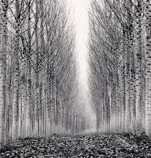 Learning From the Masters: Michael Kenna