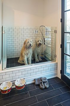Fabulous mudroom features dog shower with glass shower partition and white subway tile surround with dark grout over slate tiled shower floor.