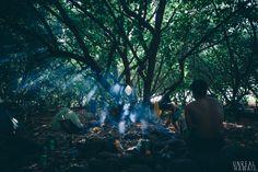 Kauai is het oudste eiland van de Hawaiiaanse eilanden en is ongeveer 5 miljoen jaar geleden gevormd. Kaui onthult haar leeftijd doormiddel van…