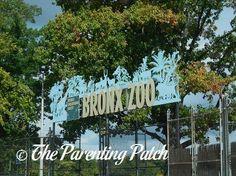 Family Fun in New York City: The Bronx Zoo