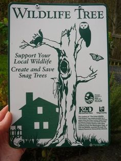 Support your local wildlife tree & put up a sign to encourage others! by ebywh, via Flickr
