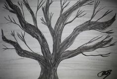 Original Drawing Charcoal Dead Tree  Signed by MikeMBurkeDesigns, $5.00
