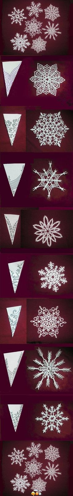 Paper Snowflakes by brandy kuhns