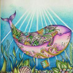 Inspirational Coloring Pages by Ale Bavaresco  @alebavaresco #inspiração #coloringbooks #livrosdecolorir #jardimsecreto #secretgarden #florestaencantada #enchantedforest #reinoanimal #animalkingdom #adultcoloring #milliemarotta #lostocean #oceanoperdido #johannabasford