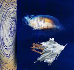 Water Dream // Pia Myrvold
