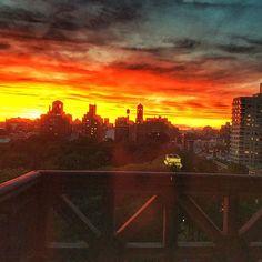 http://washingtonsquareparkerz.com/hermine-sunset-washingtonsquarepark-nyc/ | #hermine #sunset #washingtonsquarepark #nyc