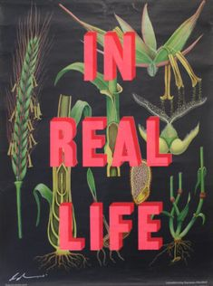 In Real Life Dave Buonaguidi Print Club London Screen Print London Clubs, Typography Prints, Screen Printing, Online Printing, Neon Signs, Real Life, Screen Printing Press, Silk Screen Printing, Screenprinting