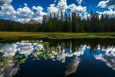 Lake Marion - Uinta Mountains - Utah - by Clint Losee The Misty Mountains Cold, Photography Gallery, Nature Photos, Cool Photos, Amazing Photos, Landscape Photography, Utah, Beautiful Places, Scenery
