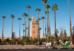 The Koutoubia mosque is the largest in Marrakech