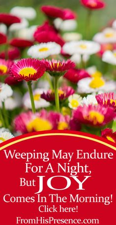 If you feel broken now, joy is coming. Weeping may endure for a night, but joy comes in the morning! Read this encouraging word if you've been weeping.