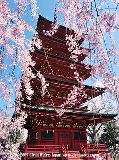 Aomori, Japan: photo by Glenn Waters ぐれんin Japan., via Flickr
