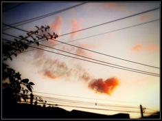548 - Coração solitário #umafotopordia #picoftheday #brasil #brazil #n8 #snapseed #pixlromatic+